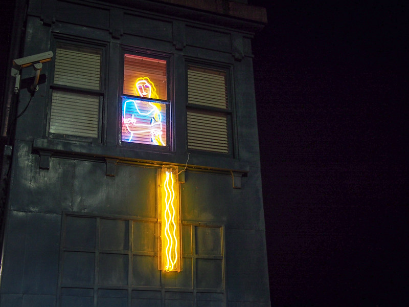 Fremont Bridge - neon Rapunzel