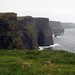 Small photo of Cliffs of Mohar