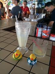 Ducks-474