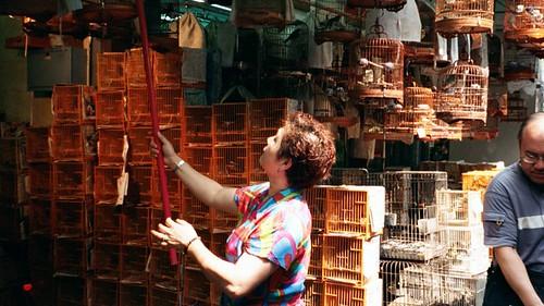 HK-lady w bird