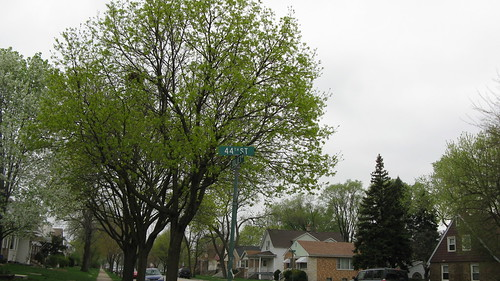 Springtime in Lyons Illinois USA. Saturday, March 24th, 2012. by Eddie from Chicago