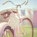 Afternoon Light + Vintage Bike = LOVE by Kimberly Chorney