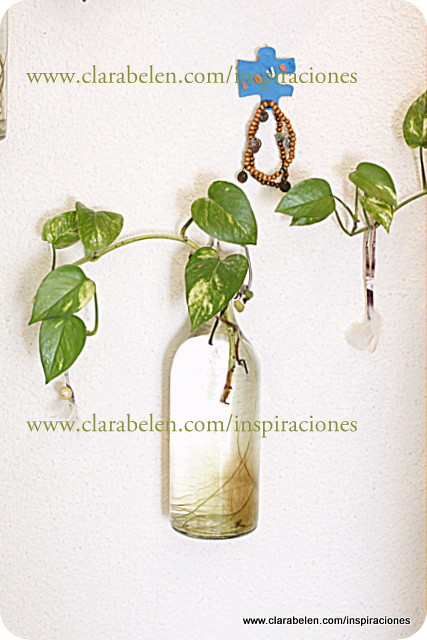 Manualidades e ideas para decoración: plantas en botellas de soda para la pared