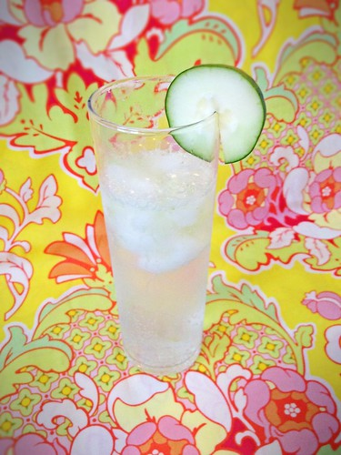 Gin and Tonic w Cucumber-Lime 3