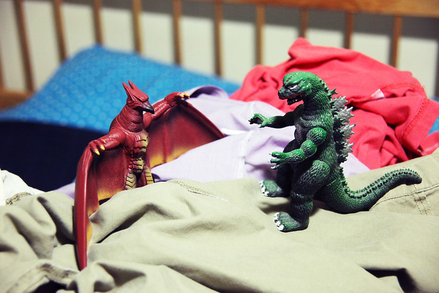 Godzilla vs Rodan on Mt Laundry