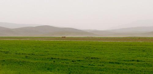 yazd-shiraz-L1030097