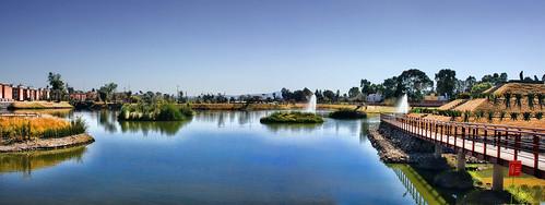 Laguna de Chapulco