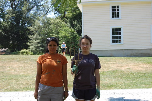 Julia Torres Vasquez and Molly Greenhouse create the American Plantation Gothic.