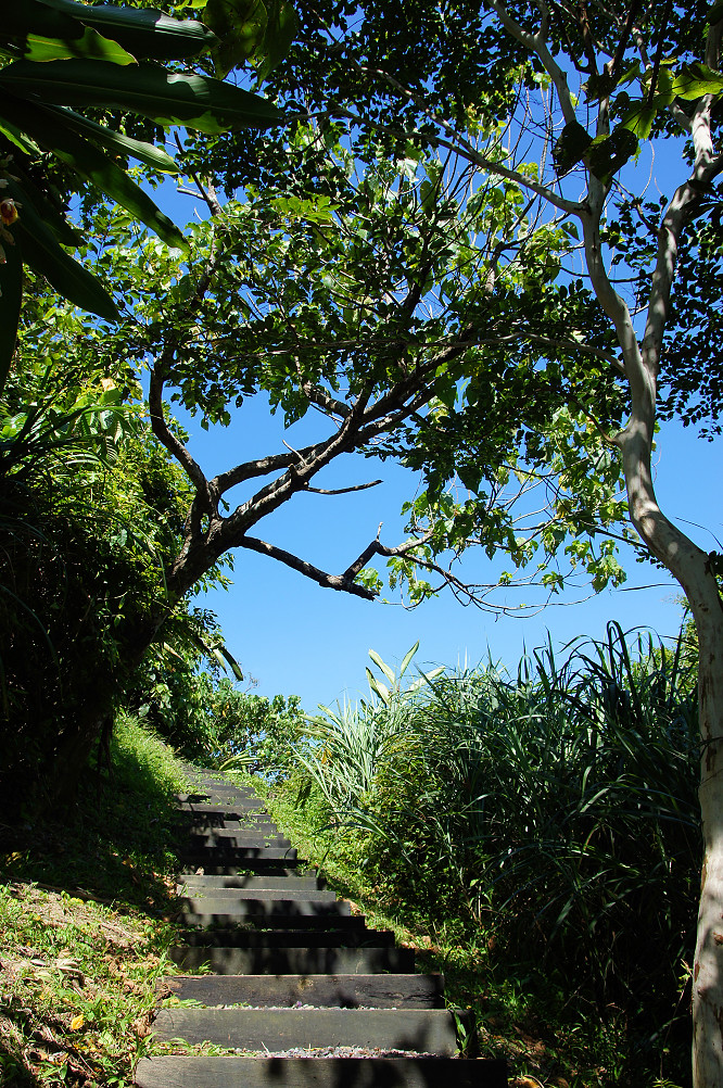 萼溫斷崖,朝陽步道-081