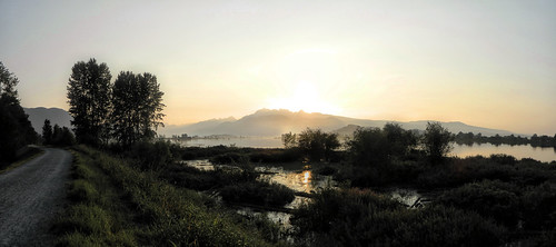 sun canada sunrise britishcolumbia portcoquitlam pittriver