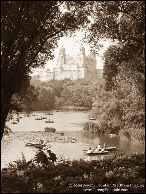 Boats on The Lake (Central Park)