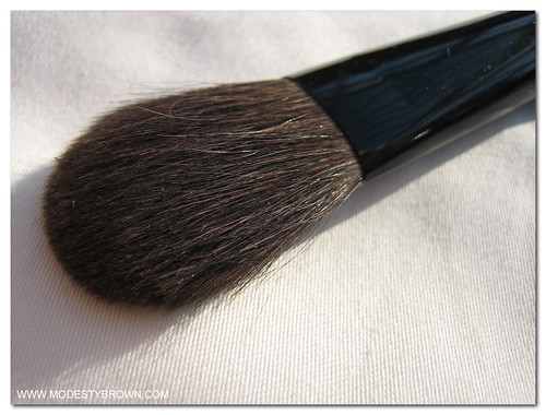 RBR+Blusher+brush2