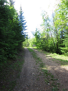 the road to camp