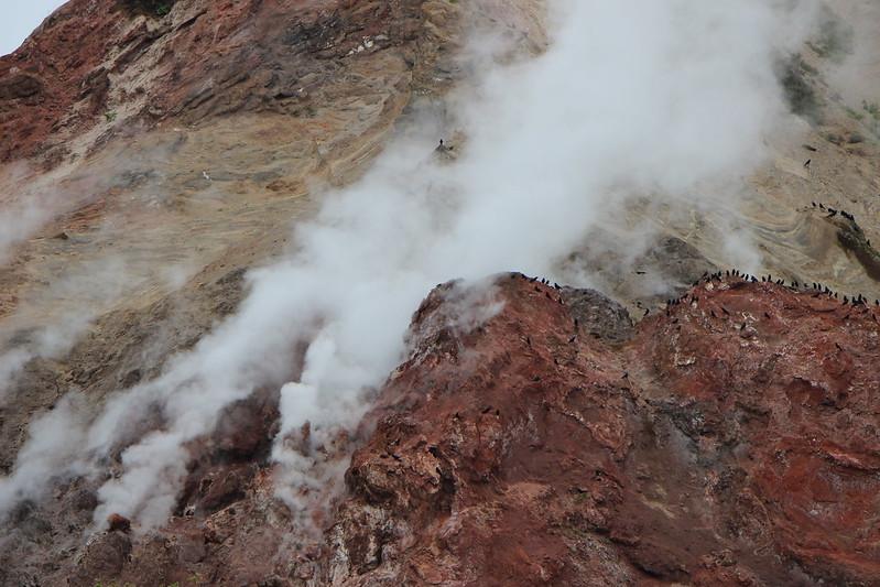 昭和新山の煙とカラス