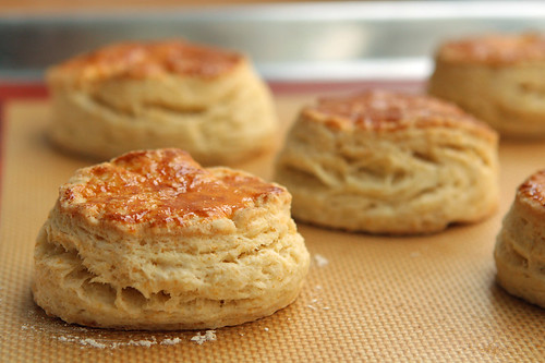 biscuits for shortcakes