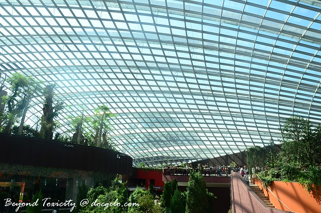roof of flower dome, gardens by the bay