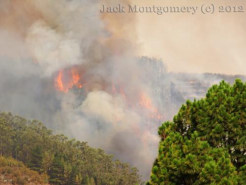 Wild Fires on Tenerife