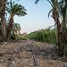 Abandoned British mandate railway, Checkpost, Haifa, Israel