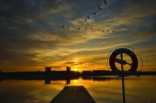 sea sunrise espoo finland geese goose westend bestcapturesaoi mygearandme mygearandmepremium mygearandmebronze mygearandmesilver mygearandmegold mygearandmeplatinum