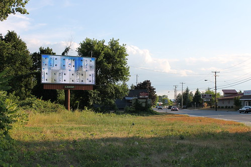 Albany Billboard Art Project 2012 - Julia Cocuzza (20)