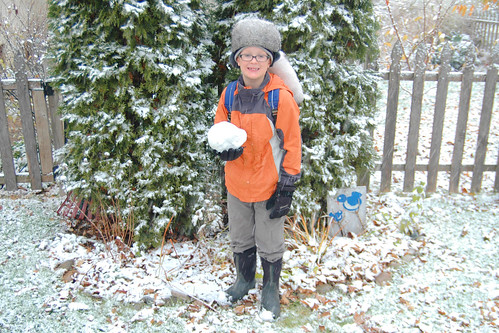 day 3048: first snowfall of the season!