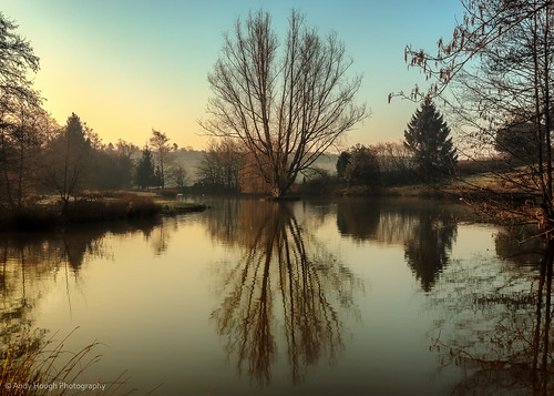 morning blue trees england sky lake reflection tree andy sunshine sunrise unitedkingdom sony peaceful bradley tranquil hough a77 sonyalpha andyhough slta77 sonyzeissdt1680 andyhoughphotography