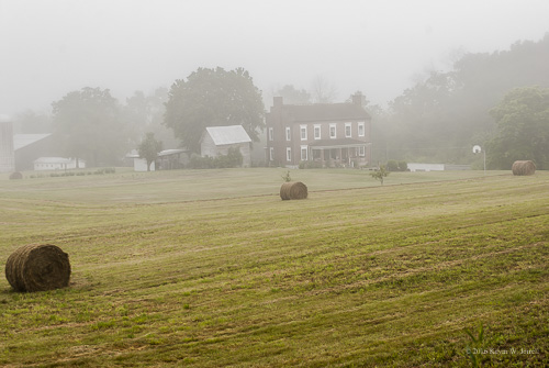 morning summer fog rural country farms hay countrylife farmlife countryroads ruralscenes nikond60 backroadphotography