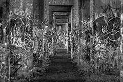 Abandoned Coal Pier 10