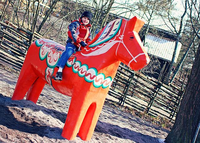 sam swedish horse