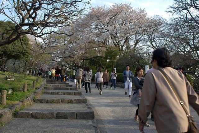 2012-kyushu-266