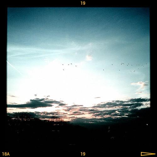mi sunrise phone michigan cell htc rezound argentimaging flickrandroidapp:filter=none htcrezound
