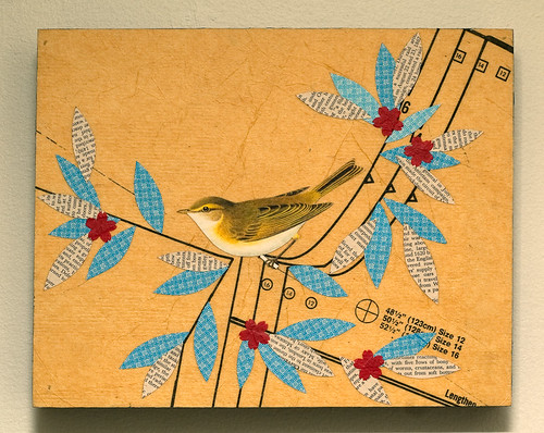 Bird collage