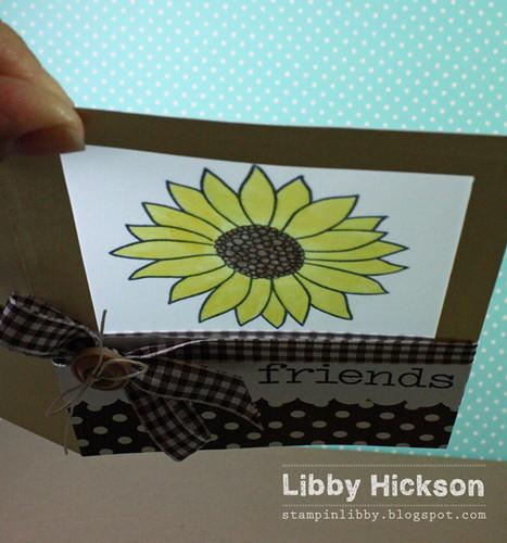 Libby Hickson2