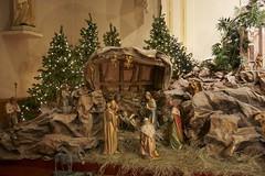 Nativity Scene - January 05, 2008