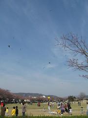 2012-1-korea-196-gyeongju-observatory park