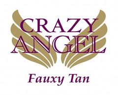 CRAZY_ANGEL_LOGO_FOR_LISA-300x244