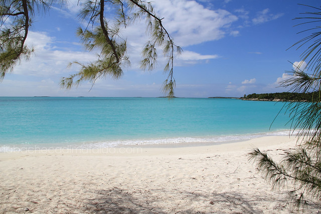 exuma bahamas jolyy hall beach