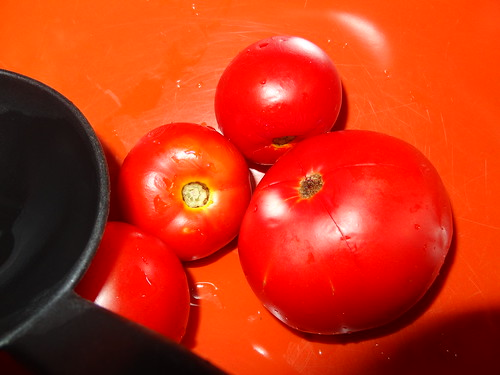 Canning Tomatoes July 2012 (2)