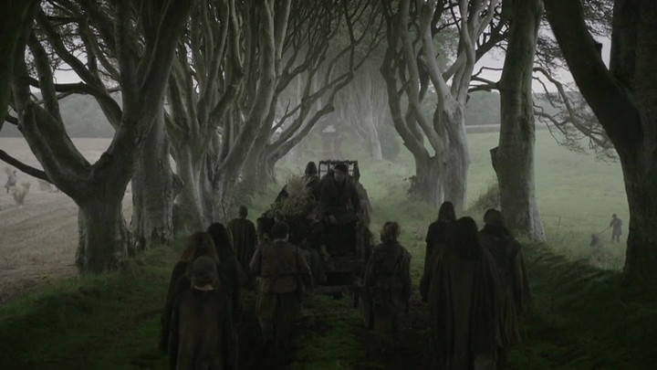 Dark hedges of Armoy - Game of Thrones Series 2 Episode 1 filmed on location in Northern Ireland