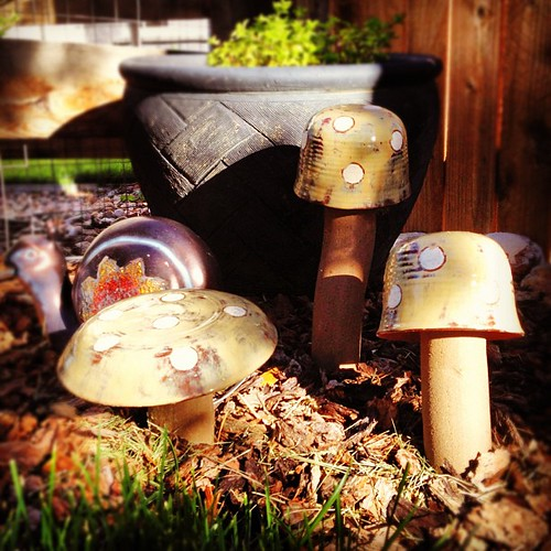 Art in the #garden : #handmade ceramic #mushrooms bought at a local art show