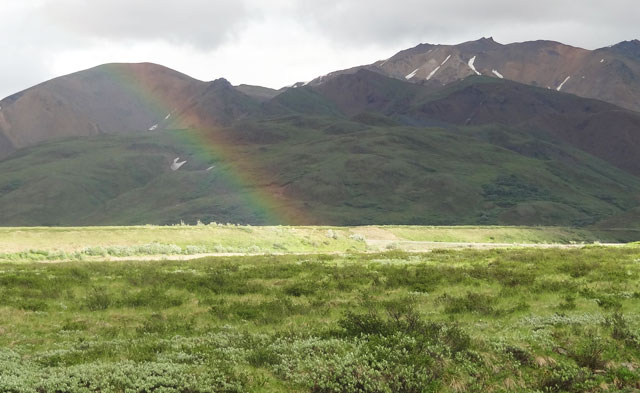 denali-rainbow alaska images