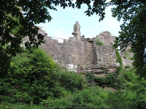 ruine du chateaux frankenbourg 042
