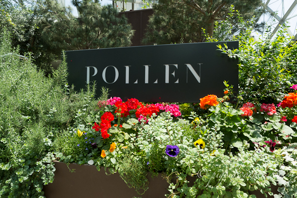 Pollen at Gardens by the Bay, Singapore