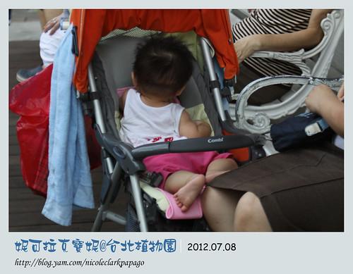 台北植物園3