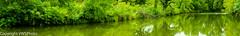 Pano of Pillsbury Crossing Pond