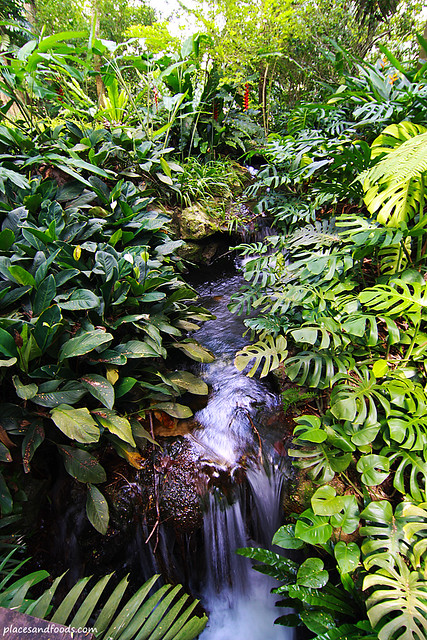 Equatorial hotel penang forest waterfall
