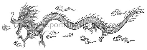 Chinese dragon illustration for Singapore Zoo - black