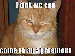 CatAgreement
