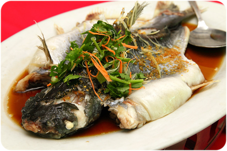 steamed-patin