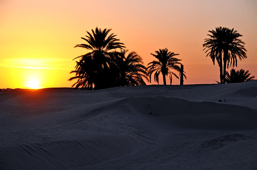 Tunisia-3747 - Sunrise in the Sahara
